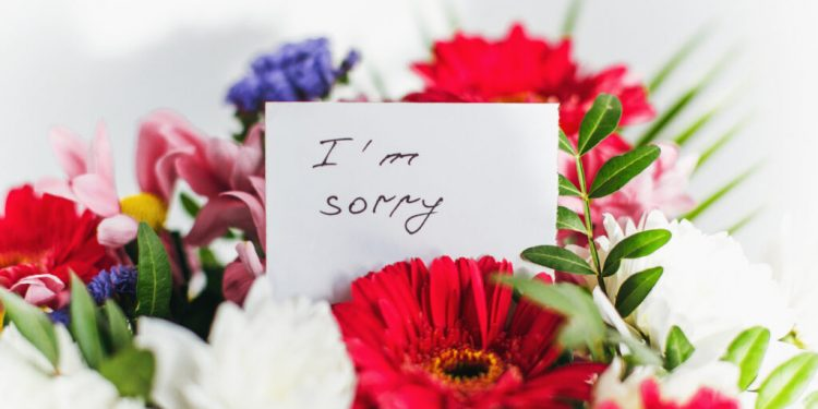What Flowers Express Apology On Your Part?